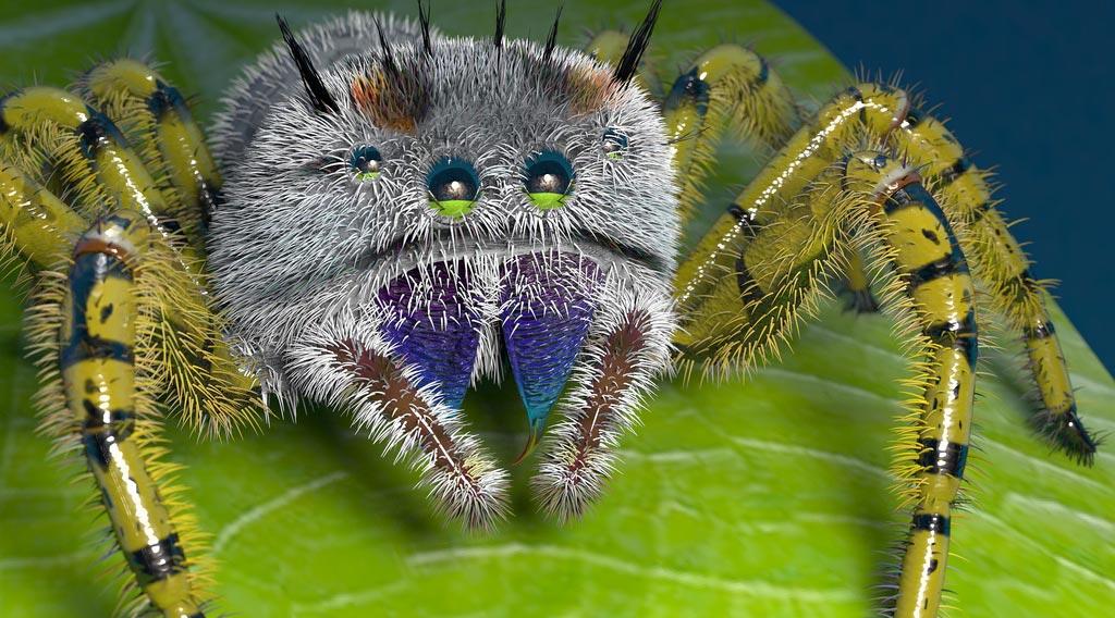 Создание персонажей в maya, моделирование и анимация насекомых